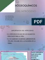 CICLOS BIOGEOQUÍMICOS [Autoguardado].pptx
