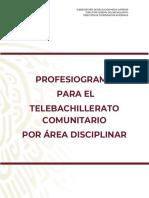 PROFESIOGRAMA 2019