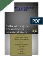 Análisis de Riesgo de Transacciones de Moneda Extranjera