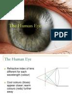 The Human Eye Day 18