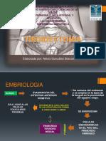 tireidectomia