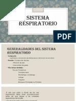 Sistema Respiratorio Histo