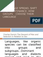 Language Spread Shift and Maintenance