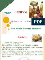 07-lipidos