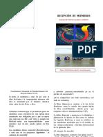 Procedimiento y Recepción de Miembros Despues Del Bautismo Pagina 146