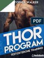 387996258-Testshock-Thor-pdf-pdf.pdf