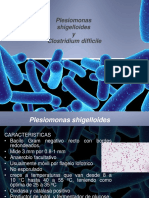 8-Plesiomonas Shigelloides y Clostridium Difficile