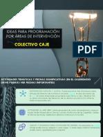IDEAS PARA PROGRAMACIÓN POR ÁREAS DE INTERVENCIÓN.pdf