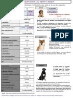 (CHIEN) Tableau Simplifié - Besoins Du Chiens(1)