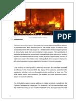 International Case Study.pdf