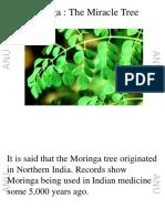 Moringa Ppt by Anu Shah