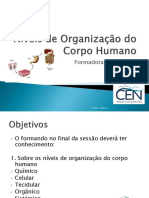 Organização do corpo