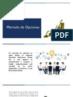 10. Mercado de Opciones