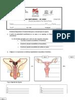 Teste 4  Sistema Reprodutor