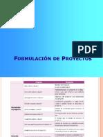 formulacion de pryectos
