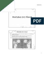 Fratura Do Femur