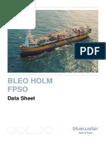 Bleo-Holm