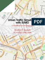 Sumo Roadmap