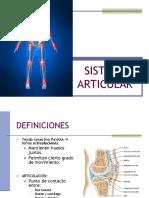 SISTEMA ARTICULAR.pdf