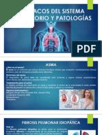 Fármacos Del Sistema Respiratorio y Patologías