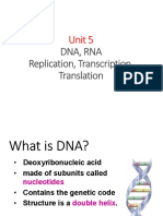 unit 5 - dna replication