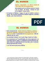 EL HUMUS