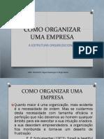 Aula_3S3_A Organização e Estrutura