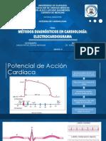 EXPO ECG