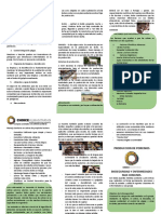 Reglas Basicas de Bioseguridad