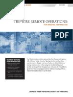 Tripwire Remote Operations Services Brief