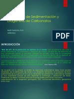 Ambientes de Sedimentación Carbonaticos y Diagénesis de Carbonatos_11!10!2019