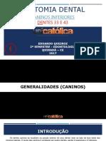 caninosinferioresslide-170818182638.pdf