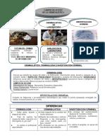 342205128-3º-CLASE-CAMPOS-DE-LA-CRIMINALISTICA-doc.doc