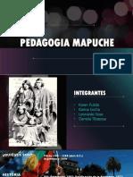 Pedagogia Mapuche 11
