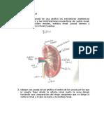 Farmacologia tarea 2