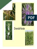 TP1 Biologie Florale 2014