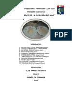 proyeto de derivados de la coronta.docx