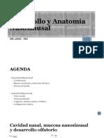 Anatomia Nasosinusal