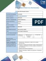 Anexo 1 Formato plan de trabajo practica profesional (2).docx
