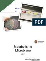 8 metabolismo microbiano