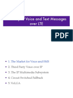 Voice and text messages over LTE