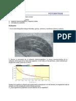 Tema_8_fotosintesis.pdf