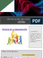 Tecnicas de La Organizacion Ppt