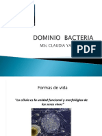 Dominio Bacteria Clase