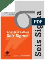 Criando a Cultura Seis Sigma.pdf
