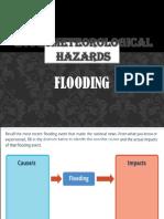 Hydro Flood