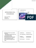 Mitokondriyal DNA İncelemeleri