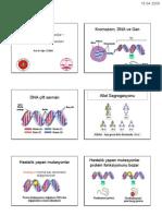Temel Genetik Kavramlar - DNA İzolasyon Yöntemleri