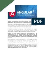 Desarrollo Fullstack Con Angular 8 y Nodejs Argentina