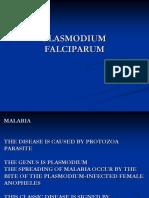 Pl. Falciparum